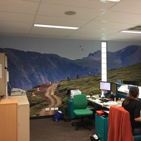 custom wallpaper MBA Financial Strategists staff workroom